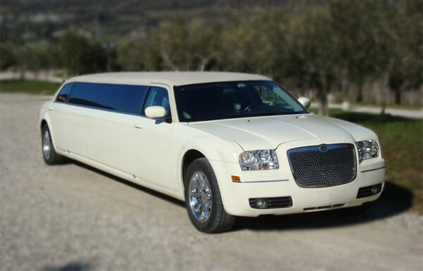 Grand Rapids 10 Passenger Limo